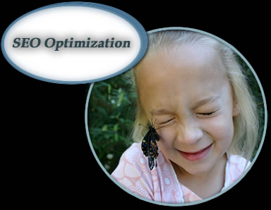 Search Engine Website Optimization (SEO)