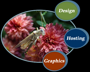 Design, Hosting, Graphics, Maintenance
